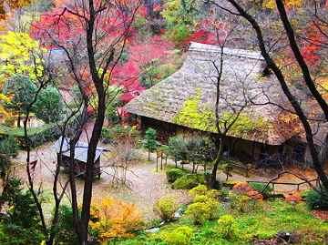 Thumb5 しずかな しずかな、里の秋おせどに木の実の 落ちる夜は~♪ どなたもご... 童謡